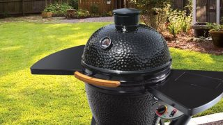 black olive pellet grill