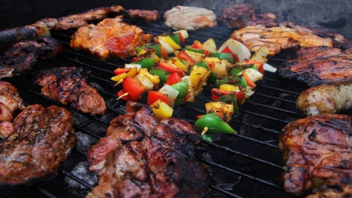 The Best Tractor Supply Pellet Grills (2019) | Grill Ace