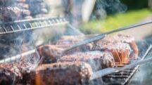 rec tec bullseye review smoker grill